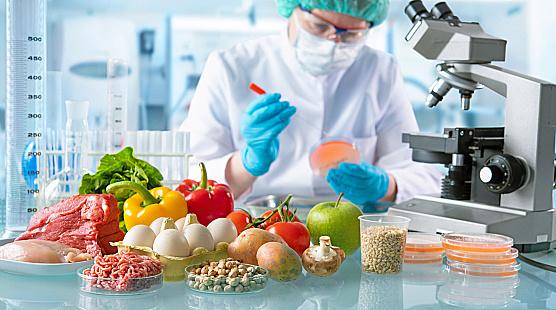 como-a-tecnologia-pode-ajudar-no-controle-de-perdas-na-industria-de-alimentos