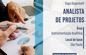 Analista de Projetos